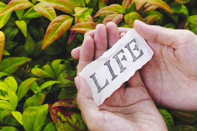 生きる意味